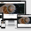 Theme-wordpress-ca-phe-100x100