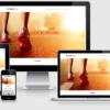 theme-wordpress-phong-gym-mau-1-100x100