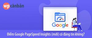 diem-google-pagespeed-insights-co-chinh-xac-khong-300x126